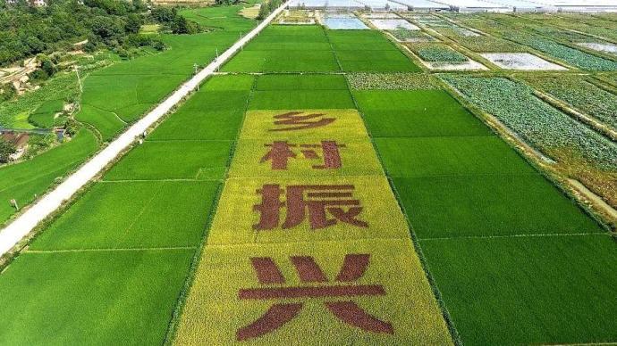 黄久生代表建议:推行全覆盖农民教育,实现乡村振兴