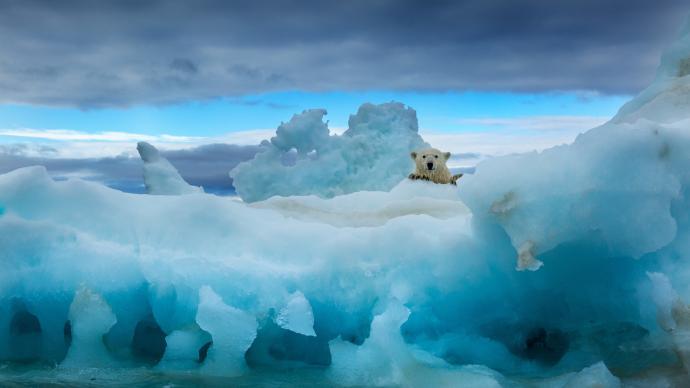 外交部:应对气候变化不应成为地缘政治筹码