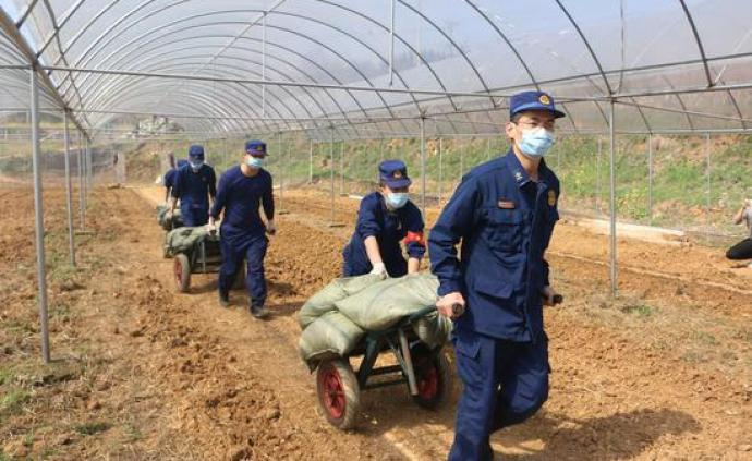 学者防疫调研   宜昌农业生产已恢复,农村出现新变化