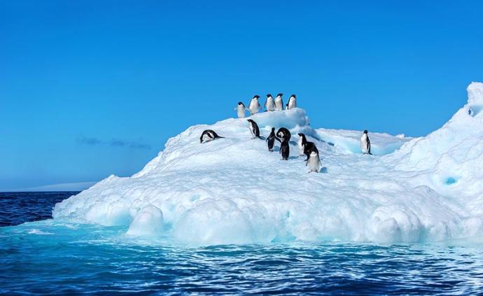 南极首遭热浪:澳大利亚科考人员录得最高气温9.2摄氏度
