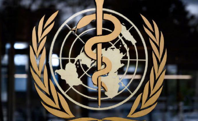 世卫总干事谭德塞宣布成立世界卫生组织基金会