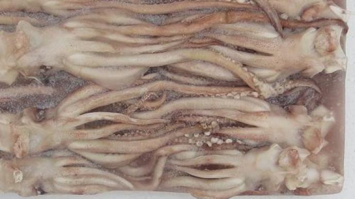 长春通报进口鱿鱼须外包装样本阳性:珲春某公司从俄罗斯进口