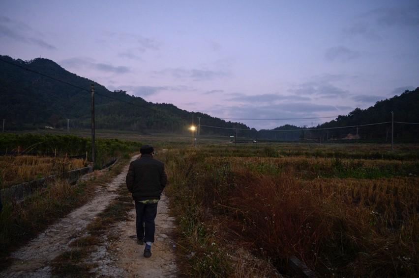 11月26日清晨六点半,初冬的闽西山区已有凉意,75岁的杨美林老人借助朦朦亮的天色走在紫云村的农间小道上。除了喂家禽外,他每天还会上山去观测国家二级保护动物白鹇。