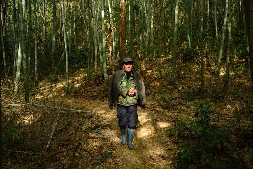 11月26日,杨美林投喂完山脚下的鸟类聚集点后,前往山上去观测鸟况。
