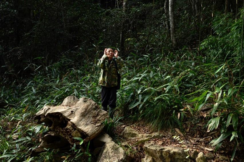 """11月26日,杨美林在山中""""唤鸟""""。"""