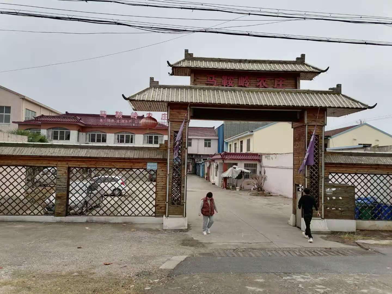 刘闾路89号,无锡市犬留所,位于一个农庄后面。