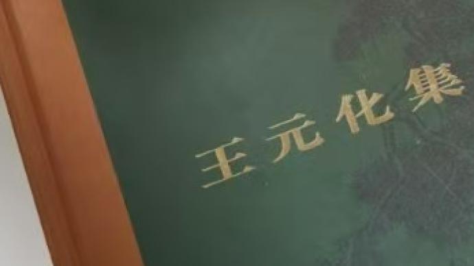 何振华:怀王元化先生