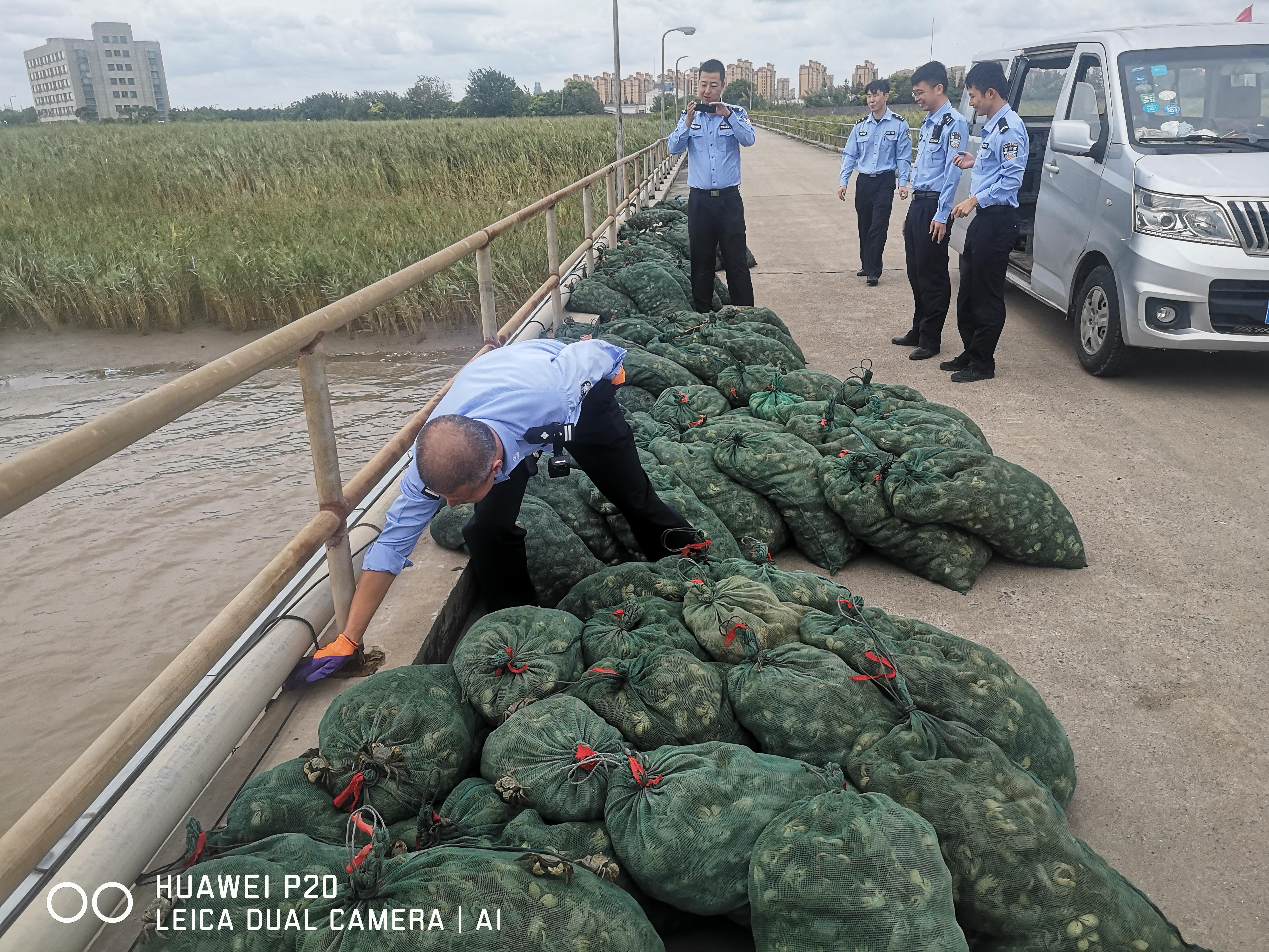 非法捕捞的渔获物 长江航运公安 图
