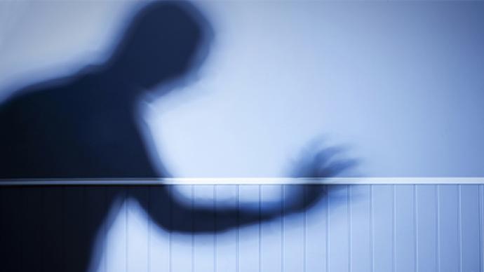 陕西:实施家暴受到治安处罚等信息将纳入公共信用信息平台