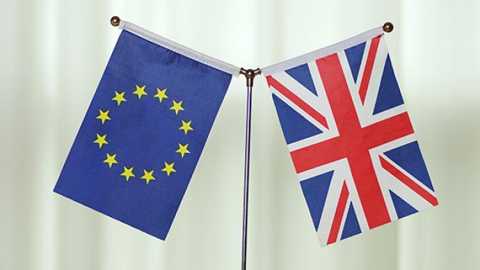 """英國""""脫歐""""僅剩一個月,歐盟談判代表:雙方仍存巨大分歧"""