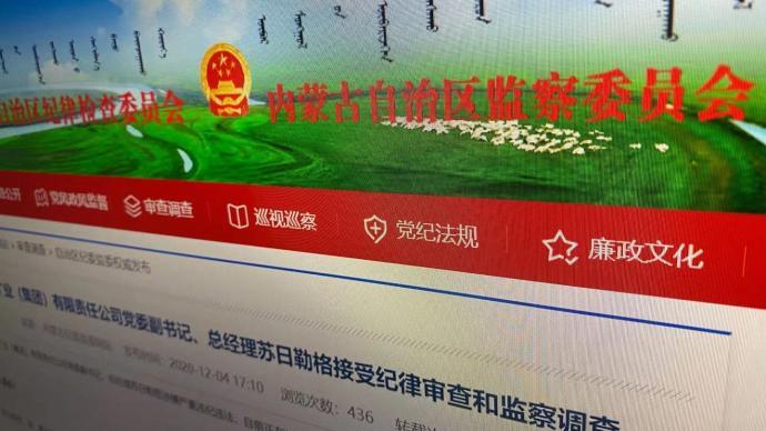 内蒙古矿业集团有限责任公司党委副书记、总经理苏日勒格被查