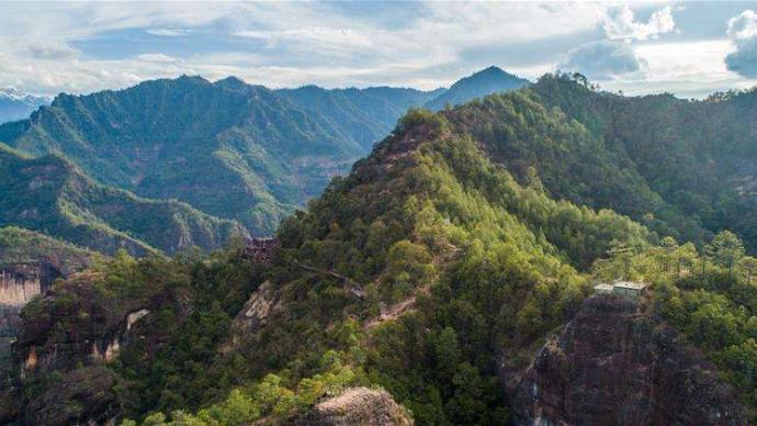 云南马关县:禁止采收老君山保护区内林下经济作物,自然放荒