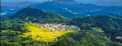 图为三明市宁化县大洋村美丽的田园风光。陈庆合摄(影像中国)