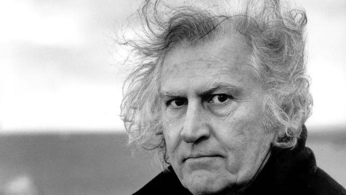 """阿根廷學者紀念索拉納斯:""""第三電影""""與庇隆主義"""