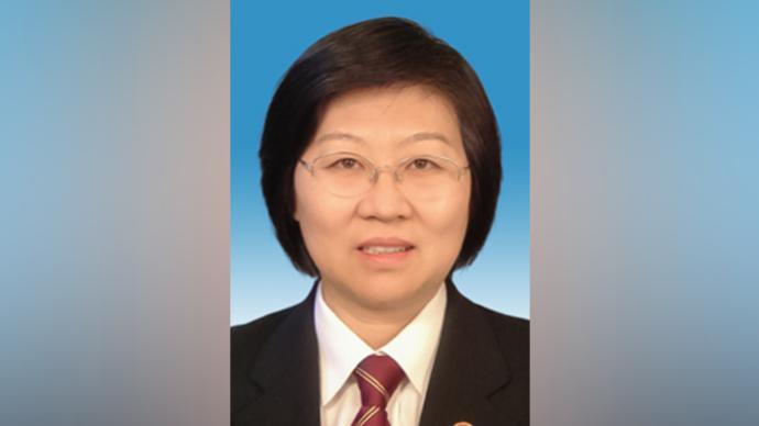 楊臨萍獲任最高法副院長