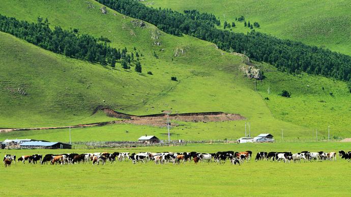 內蒙古劃定生態保護紅線,重要生態功能區不再新建風電、光伏