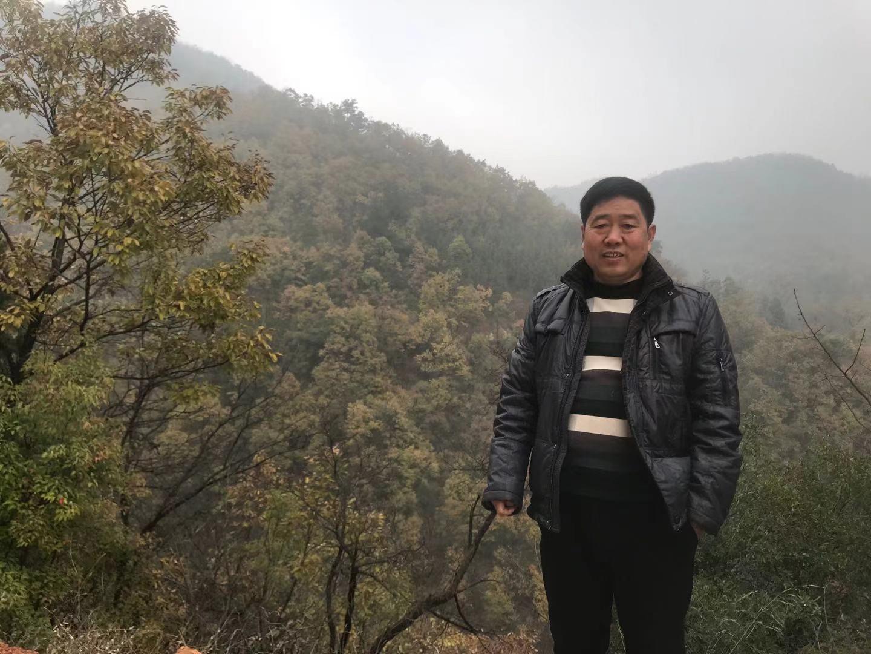 """同是""""林二代""""的陈国强,其身后是他曾参与栽种的林区。"""