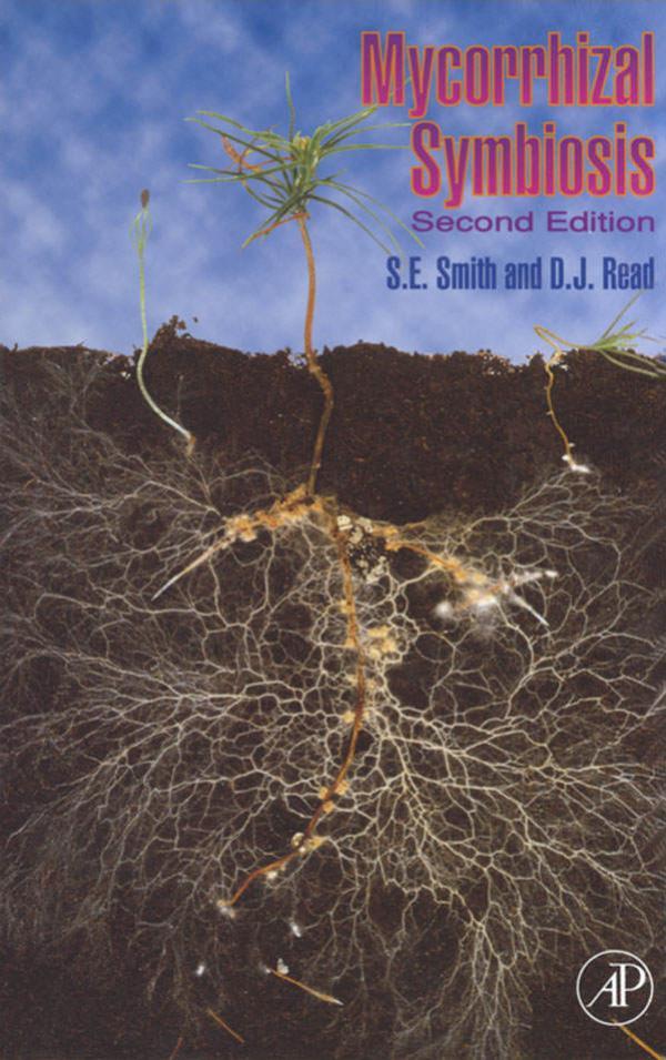 《菌根共生》封面的菌根网络