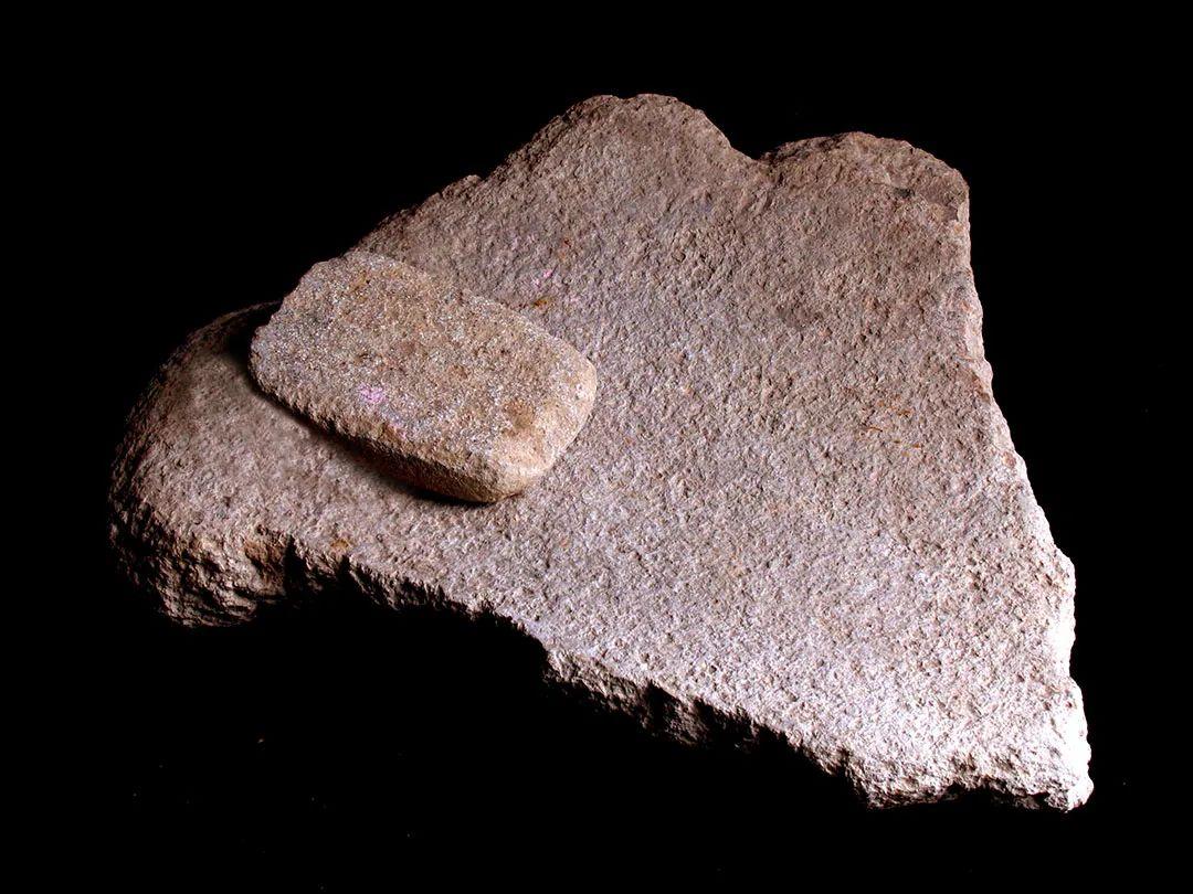 上山遗址石磨盘、石磨棒