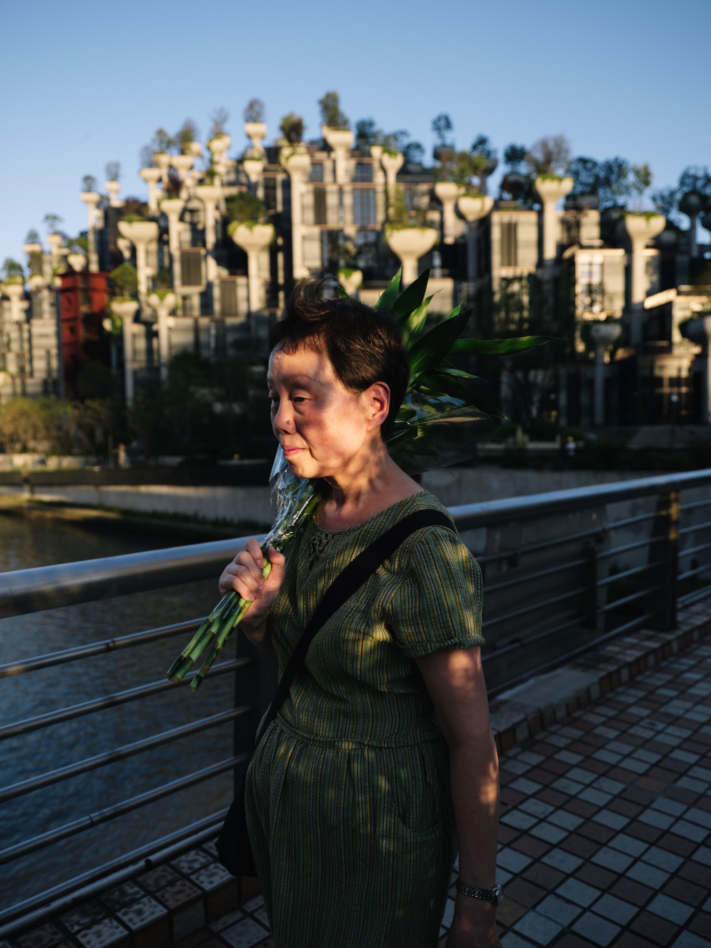 """上海苏州河畔,行人走过昌化路桥,身后是2020年落成的""""天安千树""""。澎湃新闻记者 周平浪 图"""