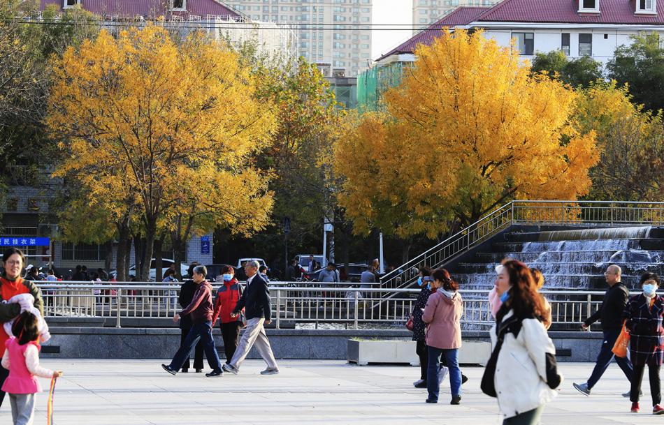 2020年11月1日,石家庄市秋意正浓,人们利用双休日时间在街心广场上休闲娱乐,尽情地享受美好时光。我国有效的疫情防控令世人瞩目。