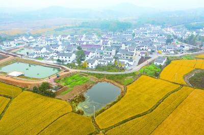 江苏句容美丽乡村入画来。新华社发
