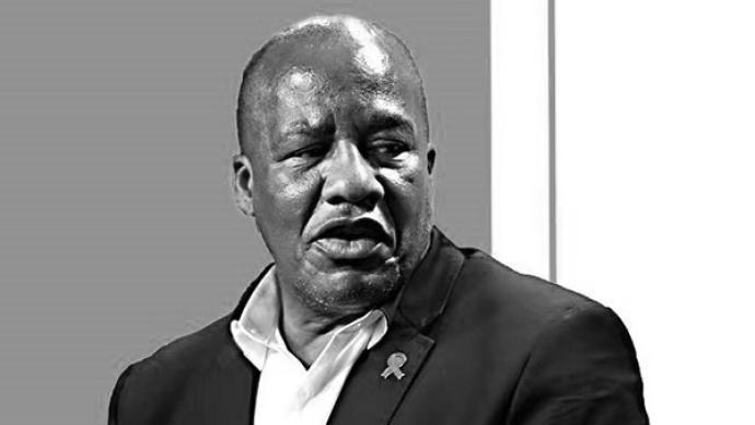南非總統府部長因新冠肺炎并發癥去世