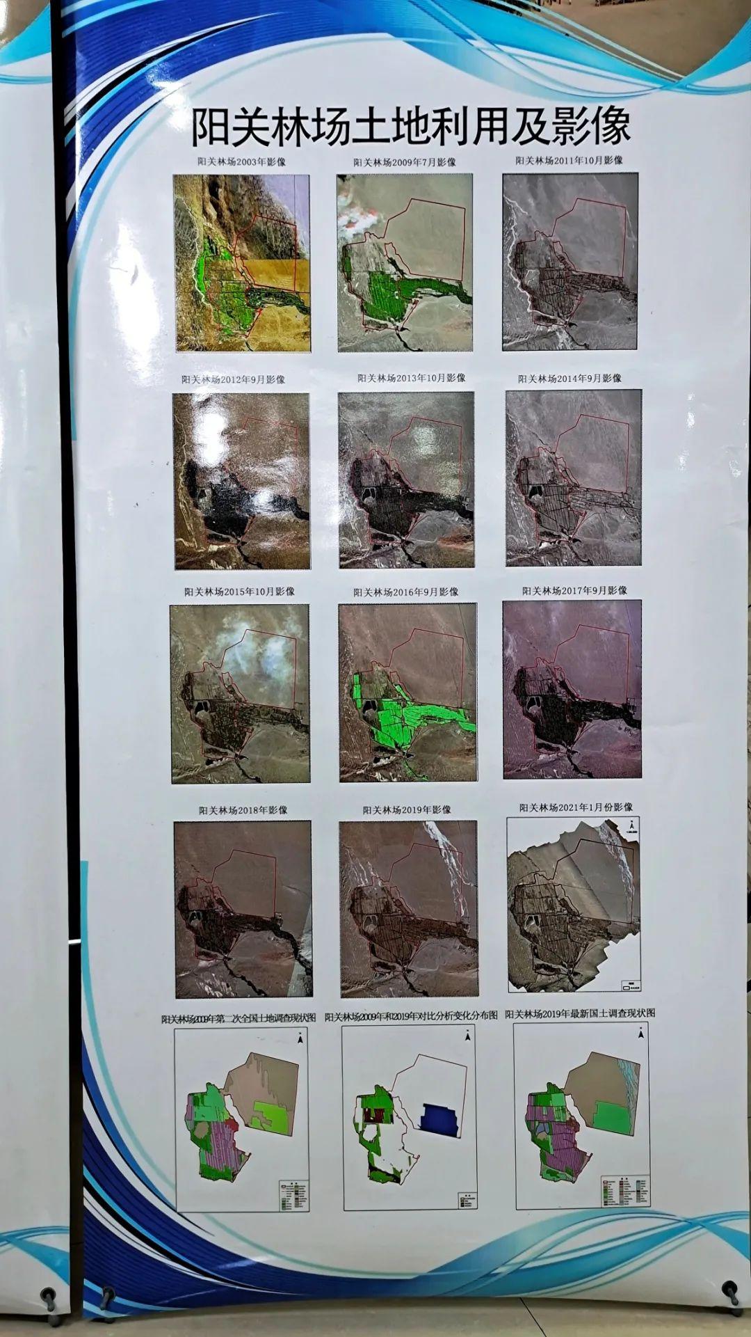 图为阳关林场土地利用影像。
