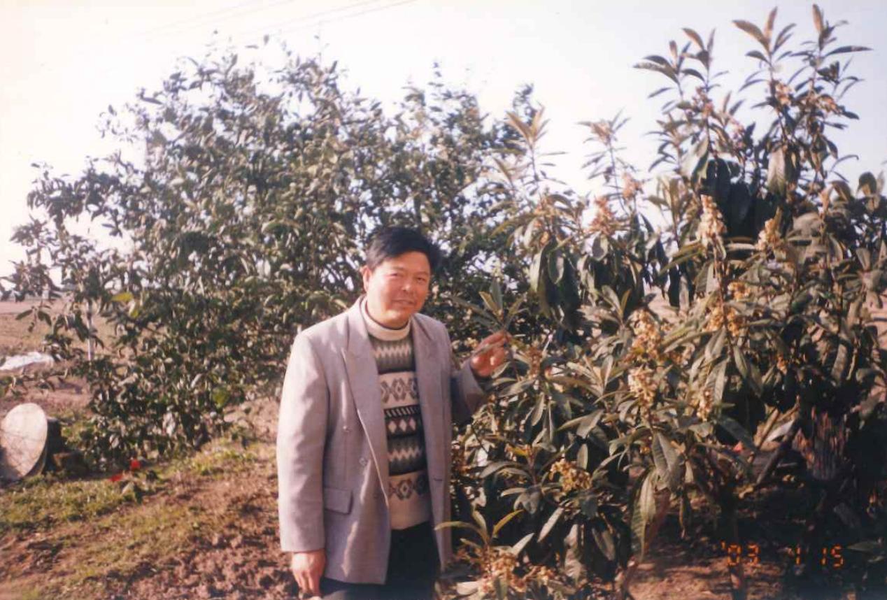 2003年1月15日,父亲和亲手摘下的枇杷树合影,这是他为数不多的几张保存完好的照片之一。