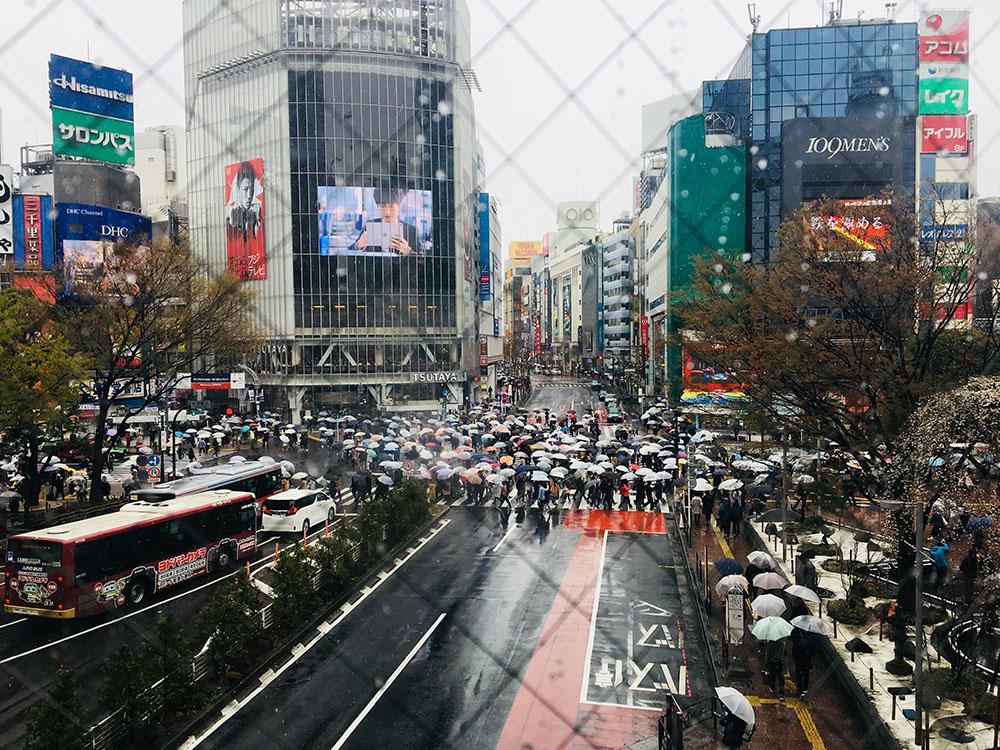 下暴雨的工作日,涉谷十字口依旧人声鼎沸。 澎湃新闻记者 王昕然 图(摄于2019年)