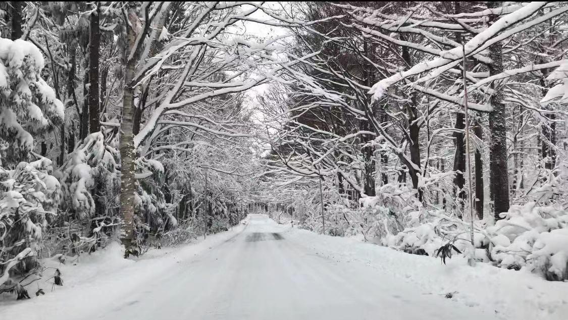 暴雪后东北地区空无一人的山间小路。 澎湃新闻记者 王昕然图 (摄于2019年初)