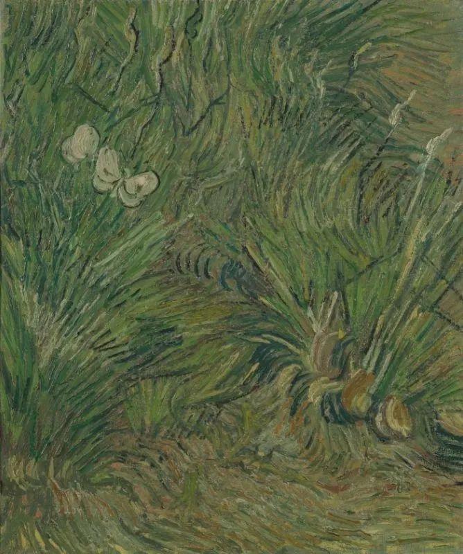 《蝴蝶纷飞的花园》1890年春天创作于圣雷米,现藏于阿姆斯特丹梵高博物馆