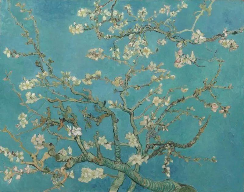 《杏花开》 1890年2月创作于圣雷米,现藏于阿姆斯特丹梵高博物馆