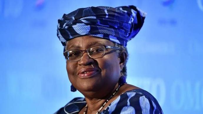 WTO选出新总干事,非洲在国际贸易中的边缘地位或将改善?