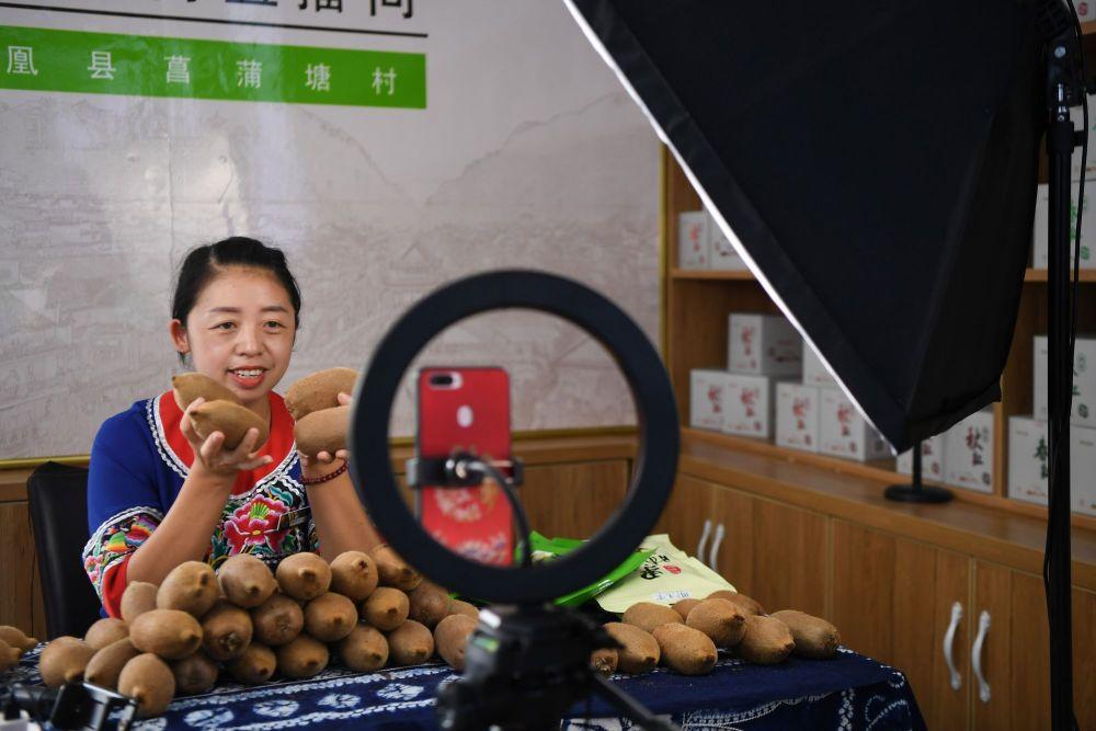 湖南湘西凤凰县廖家桥镇菖蒲塘村以现代水果产业为抓手,打造果苗培育、水果种植、果品加工、嫁接服务全产业链;通过技术引进、电商推销等手段带动产业发展。2016年,菖蒲塘村脱贫出列。2019年,全村人均可支配收入达到23419元,贫困发生率降至0.6%。这是廖家桥镇菖蒲塘村电子商务中心的主播黄小琼在直播销售猕猴桃(2020年9月10日摄)。
