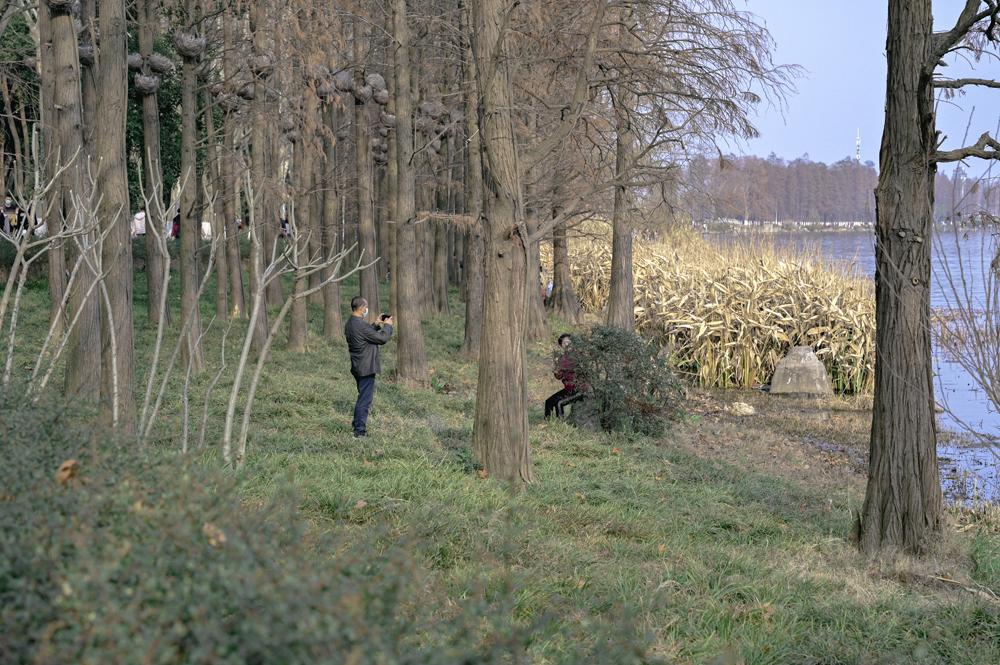 林间拍照的中年人。