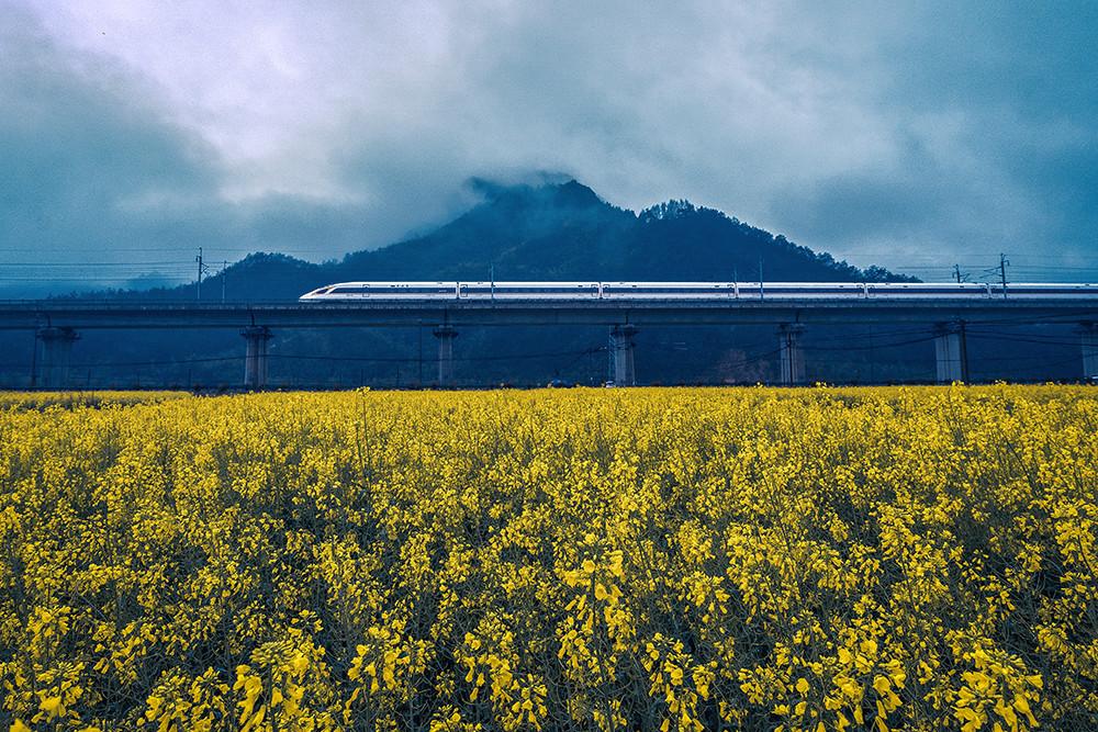 2020年3月22日,安徽宣城绩溪县,春分时节,皖南山区的油菜花争相盛开。黄山至杭州的杭黄高速铁路穿过油菜花田,飞驰的动车组列车与山间花海构成一幅美丽的画卷。