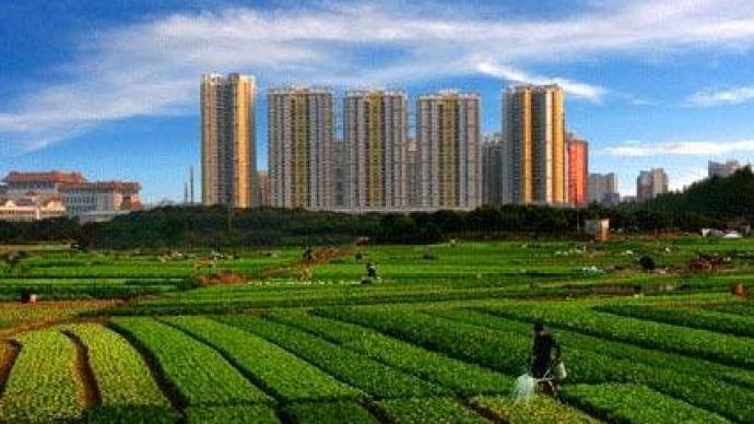 上海社科院|超大城市为什么更需要大力发展都市农业