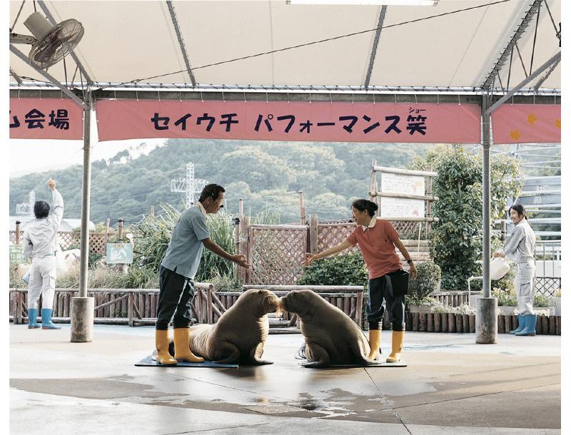 水族馆驯兽师© 浅田政志