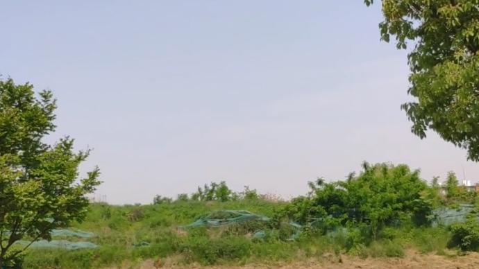 南京牛年首场土拍5宗宅地均达到最高限价,最快成交仅57秒