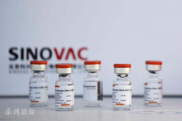 科兴公司新冠疫苗。 图片来源:澎湃影像