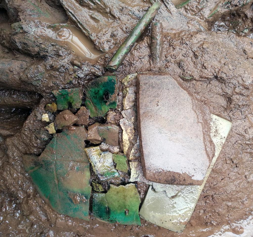 M 99号墓出土的龟甲