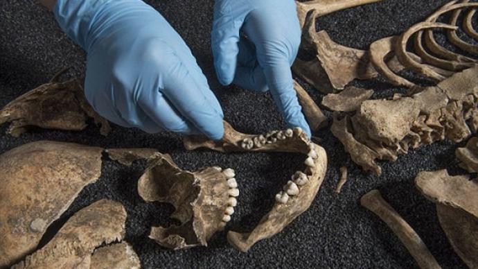 当考古遇上DNA:答案不只在文献里,也在实验室中