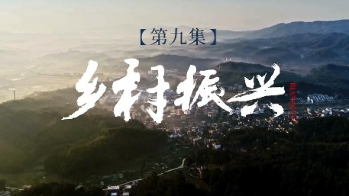 系列时政微视频·变迁|乡村振兴——总书记指挥打赢世纪脱贫攻坚战