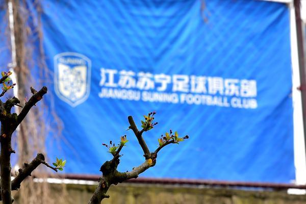 苏宁俱乐部停止运营后,江苏足球能否枯木逢春?