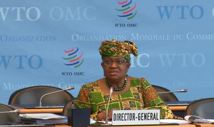 星耀娱乐:恩戈齐·奥孔乔-伊韦阿拉正式就任世贸组织总干事