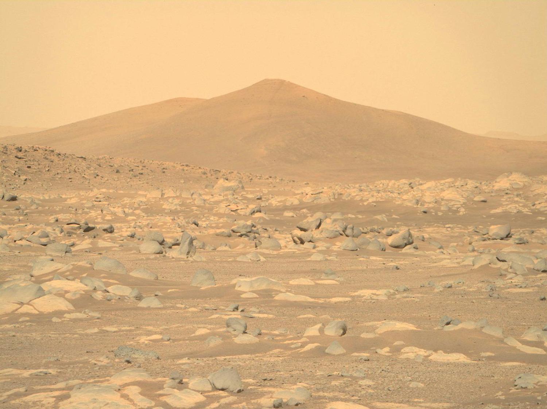 """火星地表图像,""""毅力号""""拍摄于2021年2月24日(Sol 4)当地平均太阳时间14:26:36"""