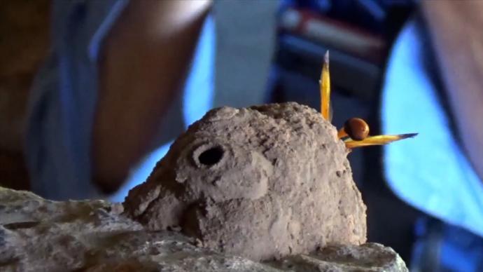 """研究人员发现1.7万年前""""袋鼠图"""",成澳大利亚最古老画作"""