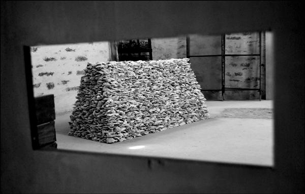 《一摊牡蛎》,装置,2011(Julien Thomas/摄影)