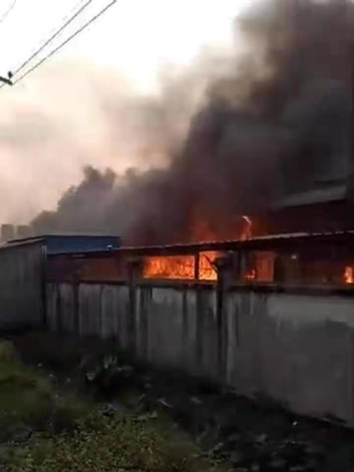 王枫所在工厂遭不法分子纵火